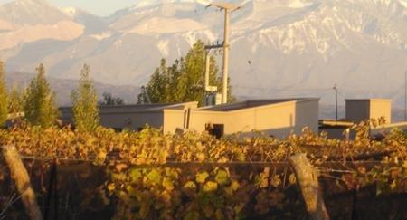 Promociones Alpamanta Estate Wines
