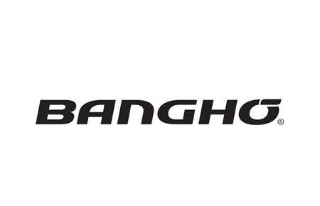 Promociones Bangho